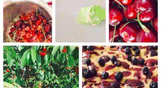 Sommerküche: mein Clafouti